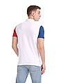 Aeropostale Regular Fit Colour Blocked Polo Shirt